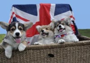 Are Brits actually fussed about the Jubilee?
