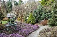 Five winter gardens to visit this month