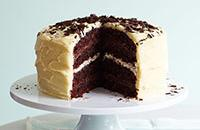 Coconut & chocolate layer cake