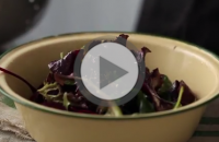 Making a classic vinaigrette