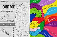 Are you left or right-brained?