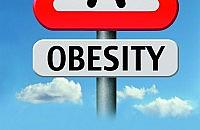 Should slimming clubs be available on the NHS?