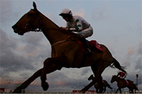 Christmas-Racing-Saturday-at-Ascot
