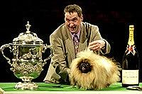 Handler Albert Easdon with three-year-old Pekinese dog called Danny after he was named Best in Show at the Centennial Crufts event in 2003