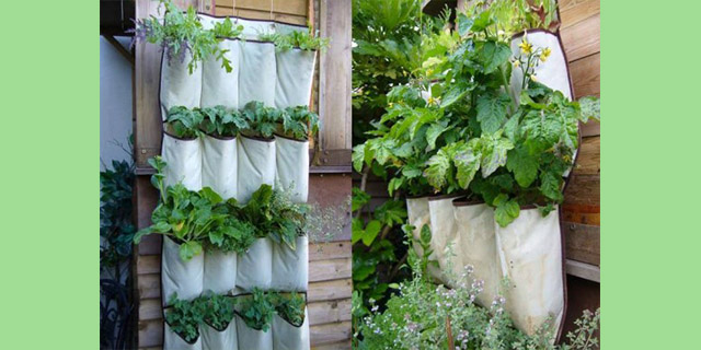 DickiesStore Hacks - Unconventional Gardening Tips (10)