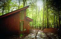 Exclusive Offer – Forest Holidays