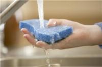Kitchen sponges: Not so clean