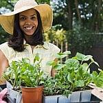 gardening lead
